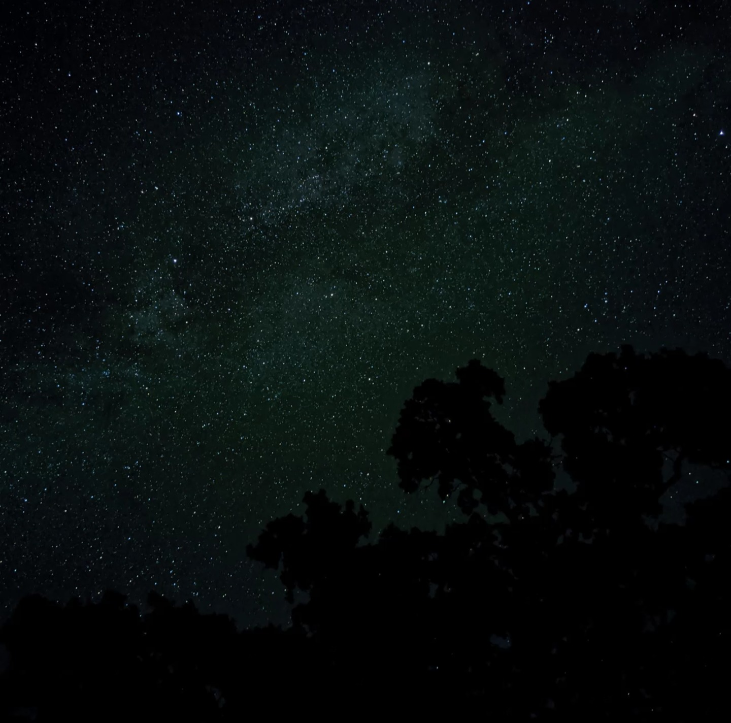 Pixel 3およびPixel 3aデバイスでも星空撮影(Astrophotography)モード